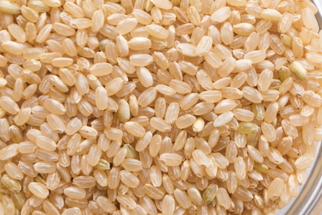 玄米を富士山麓バナジウム水で熟成発酵