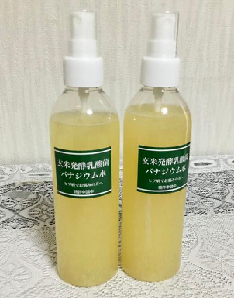 玄米発酵乳酸菌