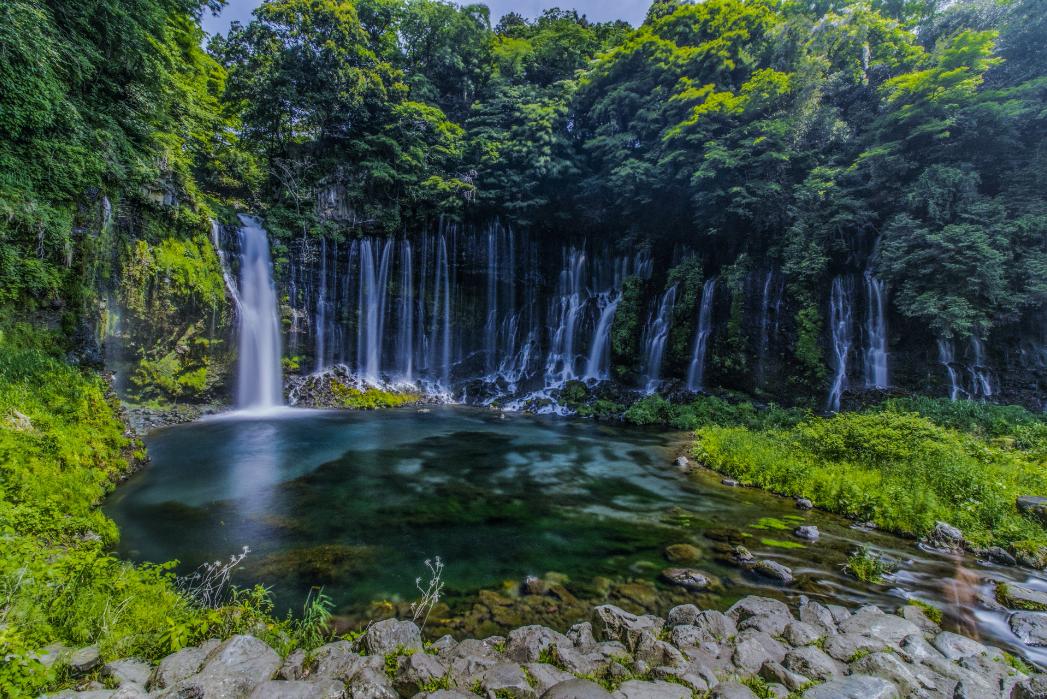 富士山麓 湧き水